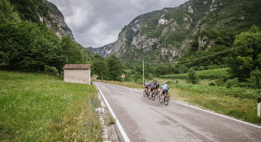 Các tay đua tập luyện theo nhóm trên xe đạp cuộc