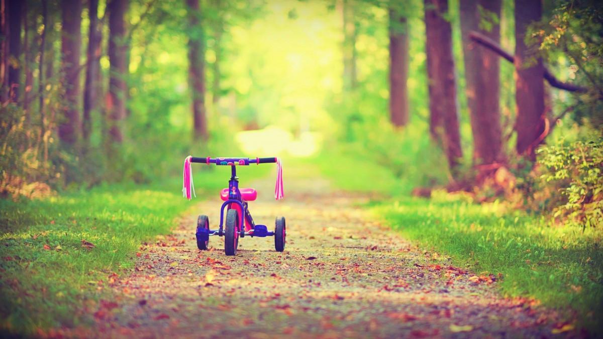 Xe đạp trẻ em xinh xắn trên con đường lá vàng