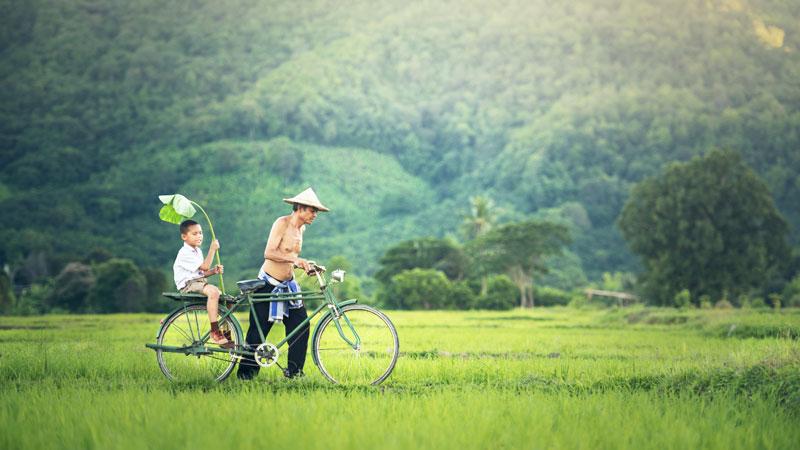 Cha dắt con trên chiếc xe đạp, ra thăm đồng xanh