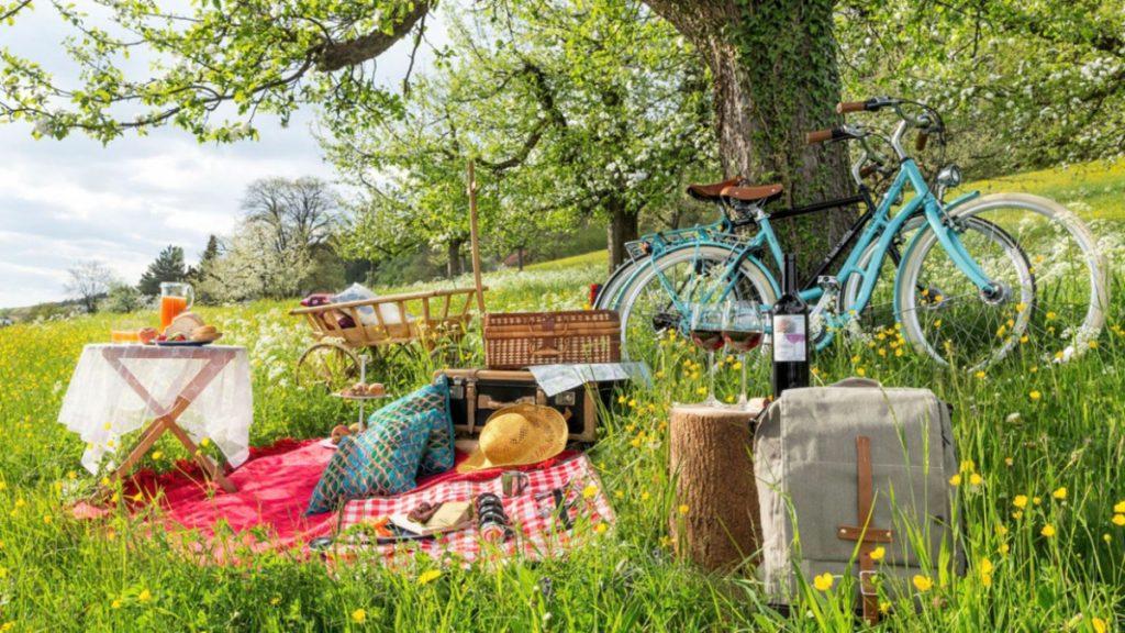 Dã ngoại bằng xe đạp bạn đã thử bao giờ chưa?