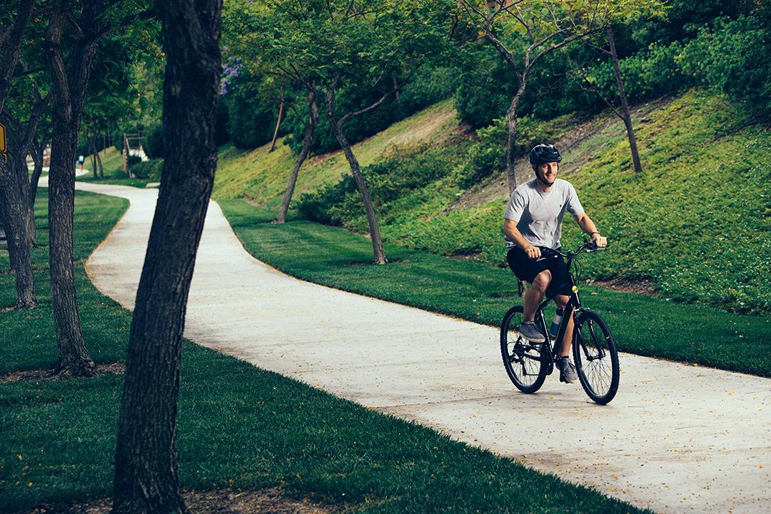 Tập thể dục bằng xe đạp mỗi sáng dưới hàng cây xanh