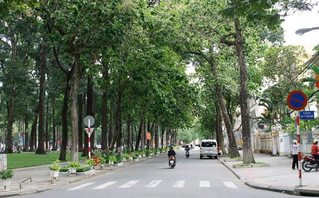Một góc đường Hàn Thuyên thoáng mát