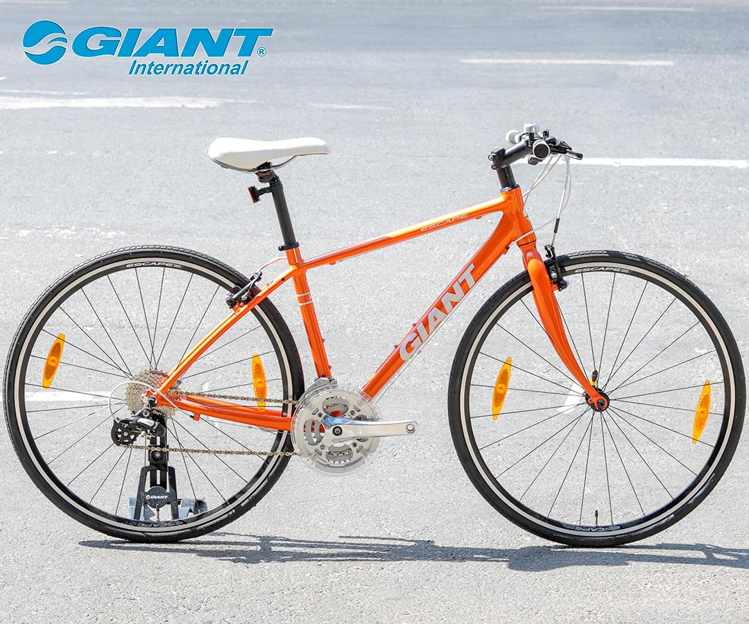 Xe đạp Giant Escape R3 màu cam năng động