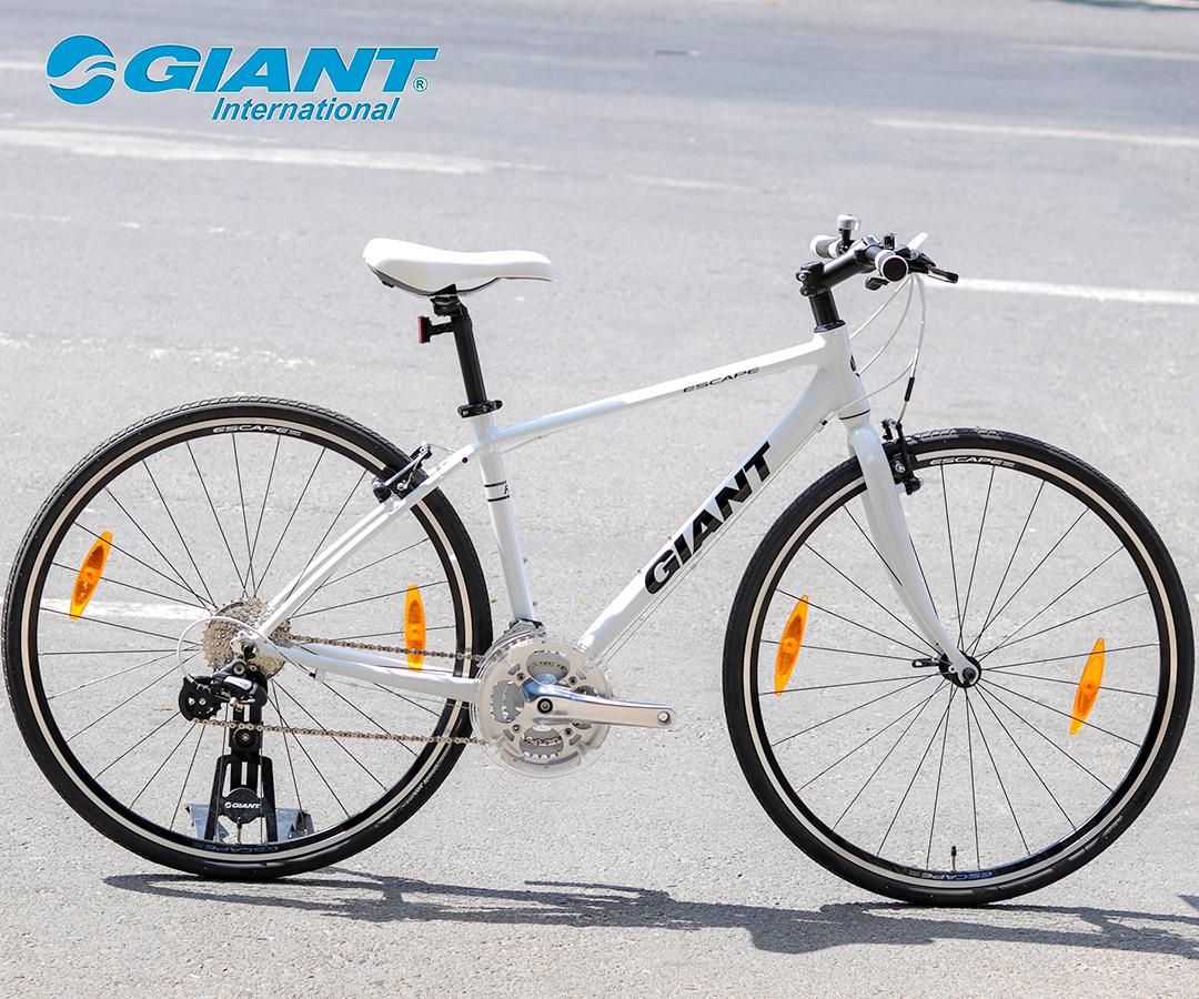 Xe đạp Giant Escape R3 với tông trắng tinh tế
