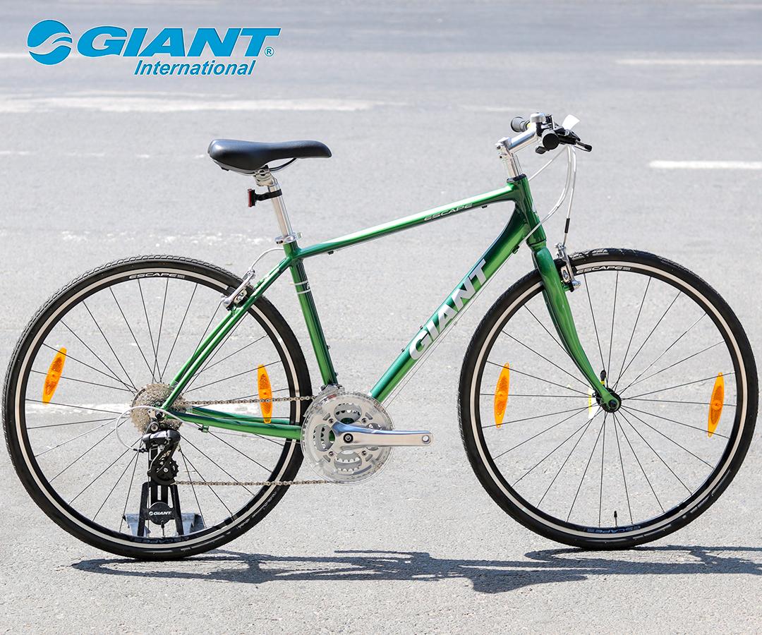 Xe đạp Giant Escape R3 tông xanh lá trẻ trung