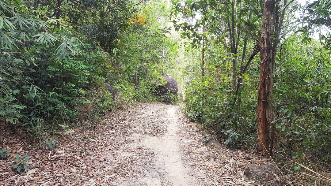 Con đường mòn các phượt thủ hay di chuyển trên núi Dinh