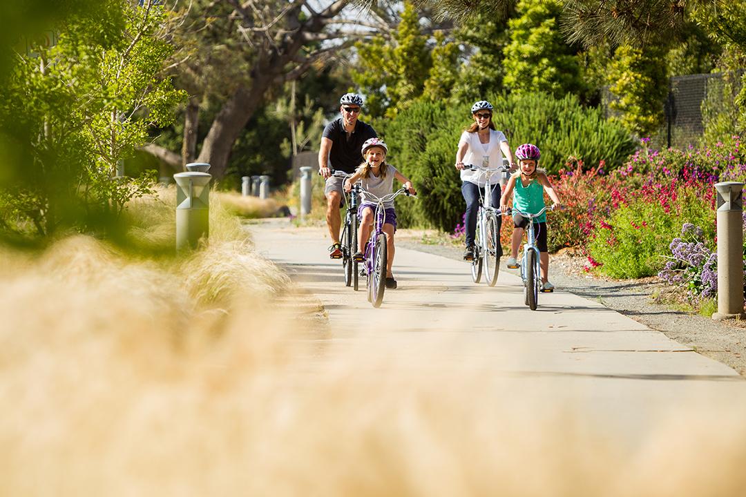 Chị em nội trợ đạp xe cùng gia đình tạo sự gắn kết giữa các thành viên