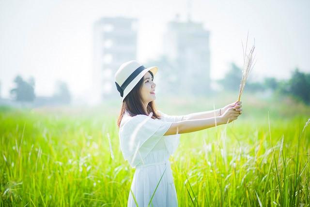 Cánh đồng cỏ lau tươi xanh thu hút nhiều bạn trẻ ghé thăm