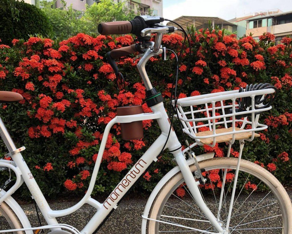 Tổng hợp 4 mẫu xe đạp nữ siêu đẹp dành cho các chị em
