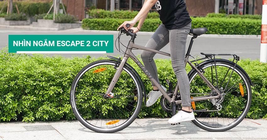 Nhìn ngắm xe đạp thể thao đường phố Giant Escape 2 City 2017
