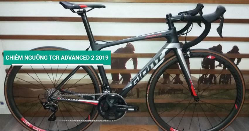 Chiêm ngưỡng xe đạp đua TCR Advanced 2 2019