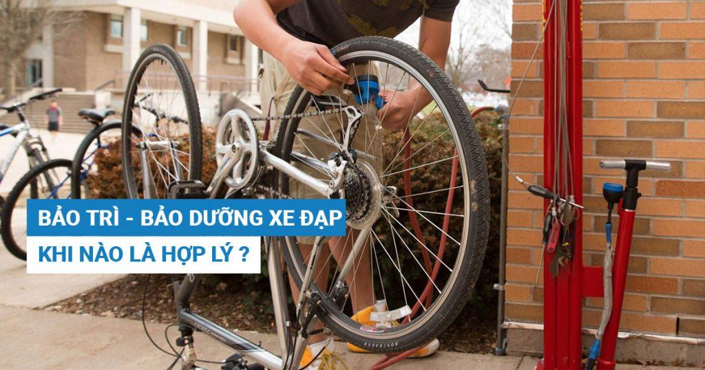 Bảo trì – bảo dưỡng xe đạp khi nào là hợp lý?