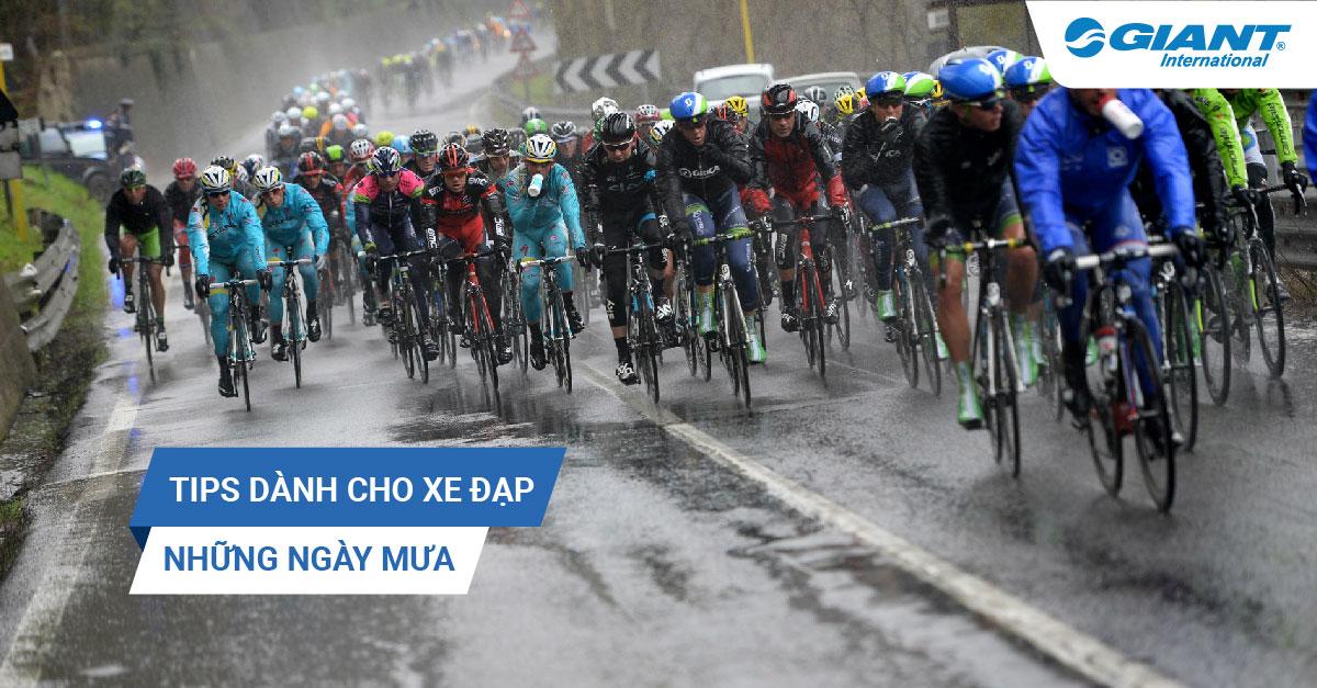 TIPS dành cho xe đạp những ngày mưa